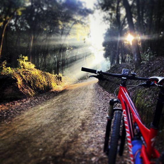 Rutas para bicicleta en la zona de Vinuesa