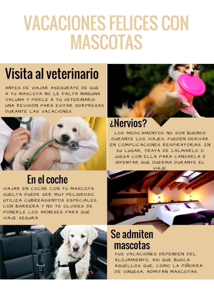 consejos útiles para viajar con tu mascota