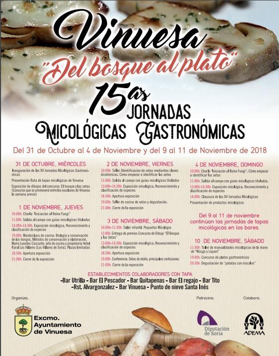 la-pinorra-vinuesa-gastronomia-micologia