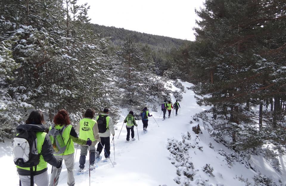Excursiones con raquetas en Soria, Vinuesa